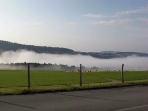 paysage-brume-saulcy-suisse-montagne