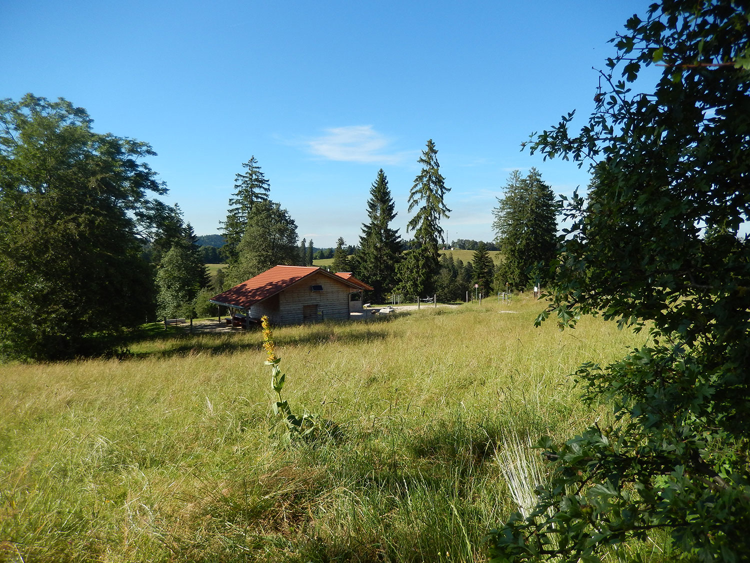 cabane-forestiere-saulcy-jura-suisse-8
