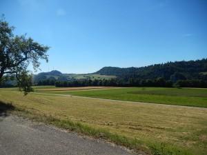 paysage-prairie-route-saulcy-suisse